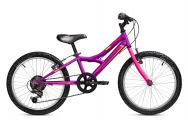 Sierra 20 Purple